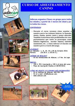 cartel-adiestramiento-octubre-2016_9f9db306cdca9715cde4ba642fea6d01