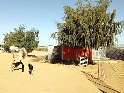 Perreras y parque