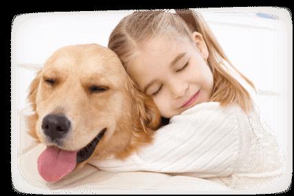 adiecan-adiestramiento-canino-adaptacion
